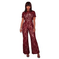 Gizi Wine Red Lace Nude Illusion Jumpsuit