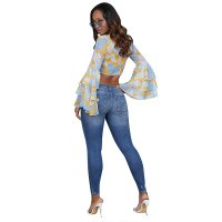 Printed Crop Plung Top with Wide Ruffle Cuffs