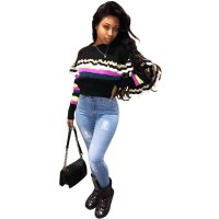 Colorful Stried Long Sleeve Sweat Shirt