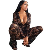 Deep V Long Sleeve Lace See Through Jumpsuit
