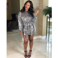 "The ""Silver"" Sequin Dress"