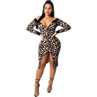 Sexy Dew Shoulder Leopard Zip Dress