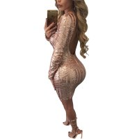 Sexy Long Sleeve Paillette Backless Bodycon Dress
