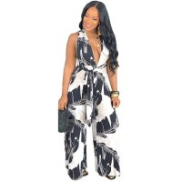 Deep V Open Back Loose Print Jumpsuit
