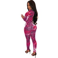 Sexy Flower Leopard Print Long Sleeve Jumpsuit