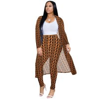 Casual Long Sleeve Leopard Print Pants Sets