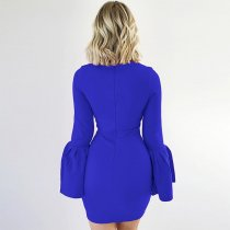 Solid Long Sleeve Knee-Length Dress