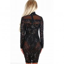 Black Sequins Sheer Mesh Long Sleeves Unlined Dress
