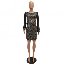 Sexy Through Mesh Sequined Club Dress