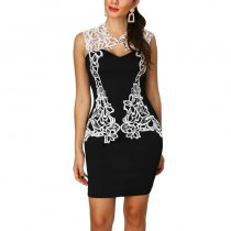 Sexy Sleeveless Lace Bodycon Dress