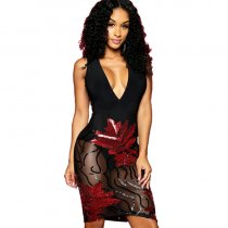 Mesh Sleeveless Sequin Night Club Dress