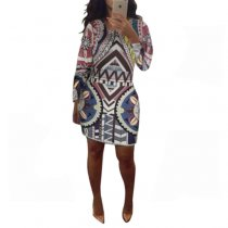Plus Size Round Neck Printed Vintage Dress