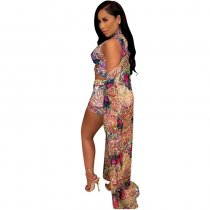Chiffon Print Split Swimsuit with Beach Cloak