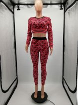 Printed Long Sleeve Crop Top & Pants