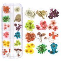 Dry flower  30pcs