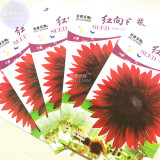 Sunflower Red Fire red-to-black Ornamental Flower Seeds