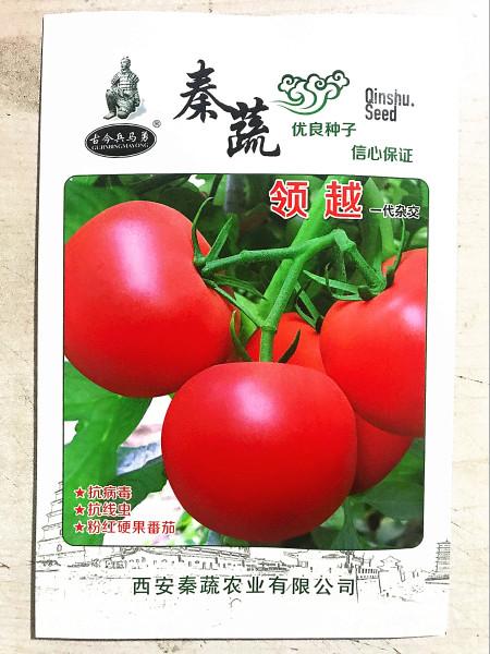 'Lingyue' Pink Tomato Hybrid F1 Seeds