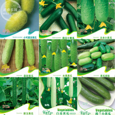Combos Cucumbers Seeds, Mixed 9 Packs organic green vegetables home garden fruits