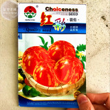 'Red Colorful' Indeterminate Tomato Organic Seeds