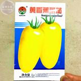 Rare Yellow 'Banana' Long Tomato Organic Seeds