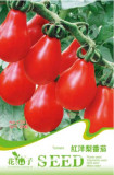 1 Original packs, 20 seeds / pack, Red Pear Cherry Tomato, Edible Organic Tomatoes #C091