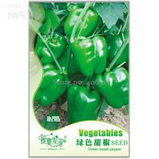 Heirloom Organic Green Bell Sweet Pepper Seeds, Original Pack, 40 seeds, organic vegetable garden courtyard IWSD222S