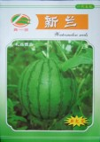 Rare Hanging Green Very Sweet Water Melon F1 Seeds, Original Pack, 10g Seeds / Pack, High Yield High Quality Juicy Melon E3002