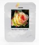 Large Light Yellow Rose Flower Seeds, Professional Pack, 50 Seeds / Pack, Light Fragrant Rose #LG00035