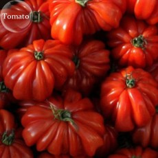 Rare Zapotec Ruffled Bright Red Tomato, 100 seeds, tasty edible organic fruits E3787