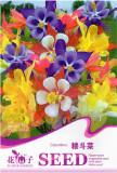 1 Original Pack, 50 Seeds / Pack, Mix Columbine Aquilegia Viridiflora Shade Perennial Flowers Seeds #A113