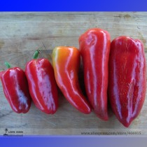 Heirloom Lipstick Long Red Sweet Pepper Organic Seeds, Professional Pack, 50 Seeds / Pack, Tasty Vegetables E3115