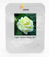 Large Light Rose Flower Seeds, Professional Pack, 50 Seeds / Pack, Light Fragrant Rose #LG00033