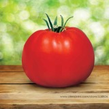 Park's Whopper CR Improved Tomato Seeds, Professional Pack, 100 Seeds / Pack, Big Juicy Crack-resistant Tomatoes #NF730