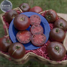 BELLFARM 'Eluosi' Cherokee Purple Giant Tomato, 100 seeds tasty edible vegetables high yield fruits for home garden