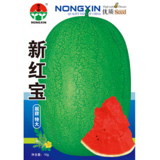 Heirloom 'Xin Hong Bao' Big Long Sweet Red Watermelon Fruit Seeds, Original Pack, 50 Seeds / Pack, Sugar 14% Contained Juicy
