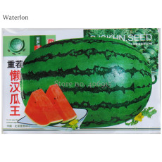 Continuous Cropping Long Red Big Watermelon, Original Pack, 30 Seeds, sweet tasty contained 13% sugar fruits OTHER401