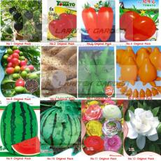 12 Original Packs, Combo Seeds, Black/Red Tomato + Coffee Bean + Chinese Yam + He shou wu + Solanum + Watermelon + Flowers