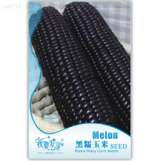 Heirloom Black Sweet Waxy Corn Fruits, Original Pack, 12 Seeds, organic vegetables rich nutrient good tasty IWSB008