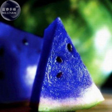 BELLFARM Rarest African Blue Watermelon NON-GMO Seeds, 10 Seeds / Pack, 10% Sugar Juicy Edible Water Melon E3009