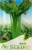 10 Original Packs, 50 seeds / pack, Green Swiss Chard Seeds Heirloon Vegetables #C123