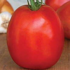 Tomato SuperSauce Hybrid Seeds 100pcs the World's Largest Sauce Tomato