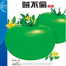 Rare Green Big Tomato Seeds, 1 Original Pack, Approx 300 Seeds / Pack, Rare Tasty Tomato Vegetables #NX039