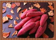 Leguminosae sweet potato seeds,100pcs/bag