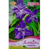 Rhizoma Iridis Orris Root Blue Flowers Seeds, 30 Seeds / Pack, Original Pack
