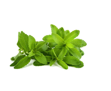 400 Stevia Seeds, Stevia Herbs Seeds Green Herb, Stevia Rebaudiana Semillas for Garden Planting Healthy