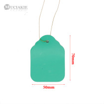 500PCS 50x70mm Plant Labels PVC Plastic Garden Markers Waterproof Gardening Nursery Hanging Tags with String for Pot Flowers