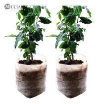 100/50PCS Seedling Plants Nursery Bags Organic Biodegradable Grow Bags Fabric Eco-friendly Ventilate Growing Planting Bags