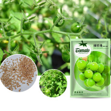 'Green Pearl' Green Round Truss Cherry Tomato Seeds Original Pack 100 Seeds
