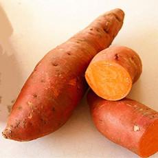 20Pcs/Bag Sweet Potato Seeds Fresh Food Vegetable Farm Garden Plants Red Purple Potato Seed h