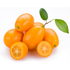 BELLFARM Kumquat Seeds, Golden Orange Cumquats Kinkan Golden Tangerine Fruits